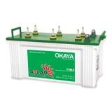 Okaya ST100H 100AH Solar Tubular Battery